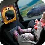 Car Mirror Lion