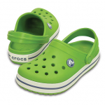 CROCBAND Parrot Green/White